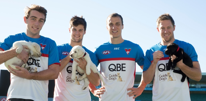Sydney Swans team with puppies