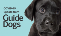 COVID-19 - Update from Guide Dogs